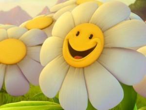 Сегодня ты цветок